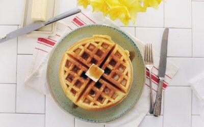 Best Mini Waffle Maker
