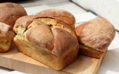 Best Bread Maker Under 100
